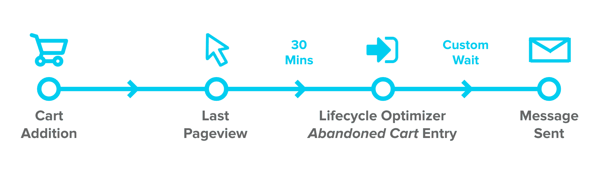 Sailthru Lifecycle Optimizer Abandoned Cart Reminder Automation Process