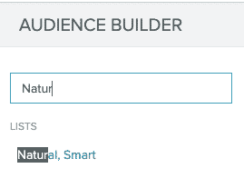 A search for the Natural, Smart filter in Audience Builder.